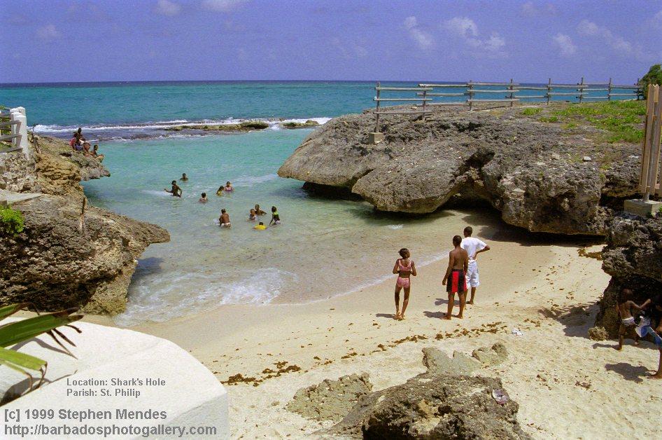 Shark Hole Barbados Shark's Hole